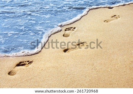 Sea shore. Human footprints on a sandy beach. Shallow depth of field. Focus on the center of the image - stock photo