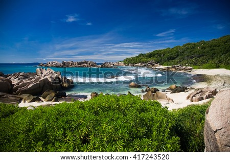 Sea shore with bushes, wild rocks and sand.