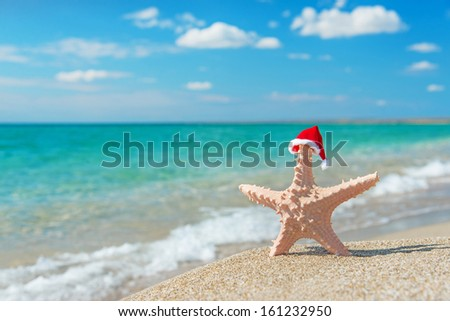 Sea-star in red santa hat at sea sandy beach. Holiday concept for New Years day and Christmas. - stock photo