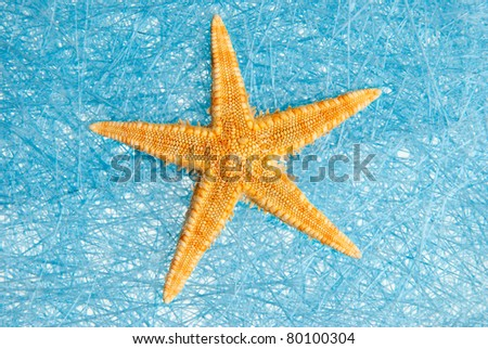 Sea star on blue straw mesh  background.