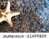 Sea Star on fishing net studio shot - stock photo