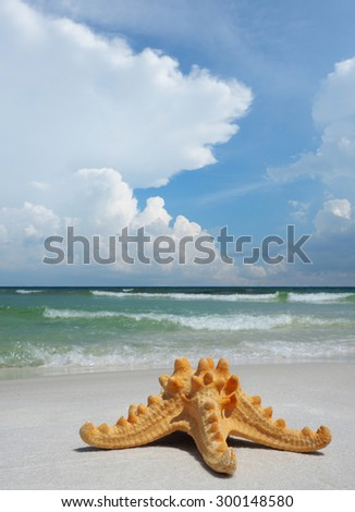Sea Star on White Sand Florida Beach With Beautiful Cloudy Sky - stock photo