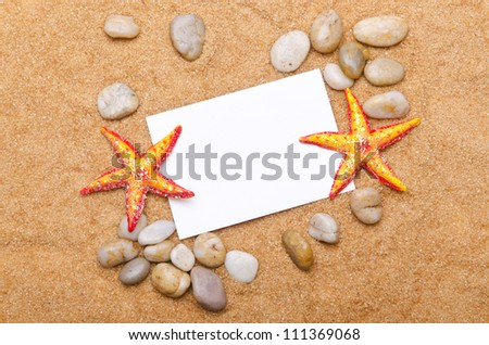Sea stars isolated on the white - stock photo