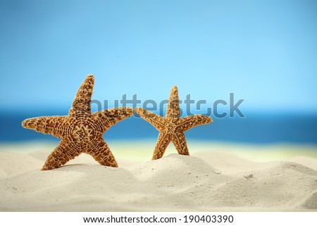 Sea stars on a white sand beach still life, sea on the background - stock photo