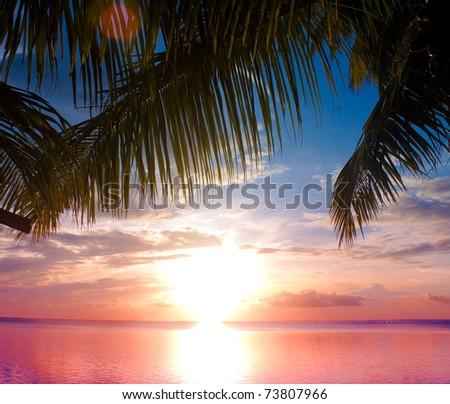 Sea Sunset Outdoor - stock photo