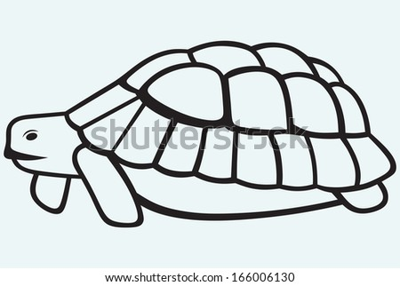 Sea turtle isolated on blue background. Raster version - stock photo