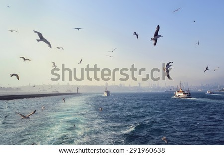 Sea view with seagulls and ships in Istanbul in Turkey