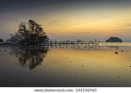 Sea water in Krabi, Thailand. The reflection of abandon tree on colourful sunset sky - stock photo
