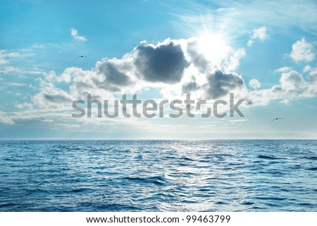 Sea with blue water, sky and clouds. Flying seagulls above the seascape