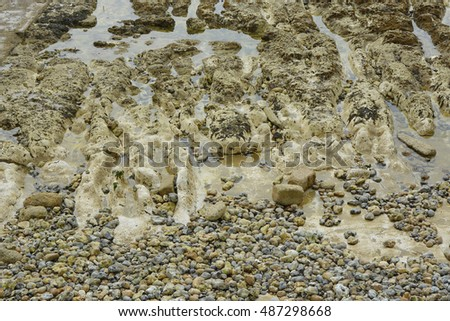 Seabed at low tide with chalk (Calcium carbonate) and shingle. Rottingdean, Brighton, East Sussex, England