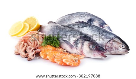 Seafood collection isolated on white - stock photo