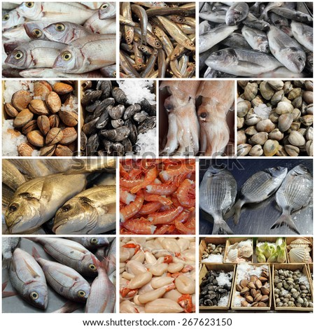 seafood display  collage, images from fish market in european countries - stock photo