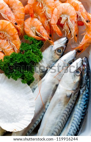 Seafood, fish - fresh mackerel and shrimps in cuisine - stock photo