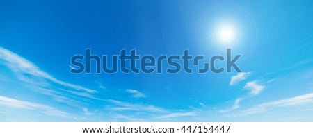 seagull flying in the blue sky with clouds
