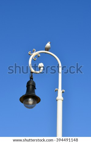 seagull on light pole with clear blue sky - stock photo