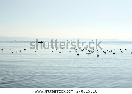 Seagulls and two fishermen in the boat, black silhouettes with light blue sea and sky. Tranquil landscape. Copy space. - stock photo