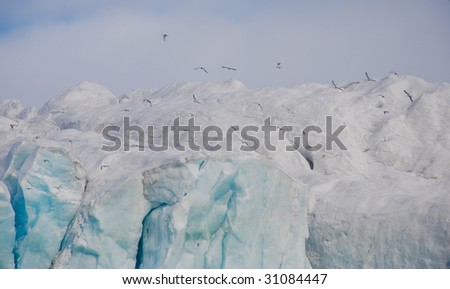 Seagulls flying above the glacier in Arctic, Spitsbergen - stock photo