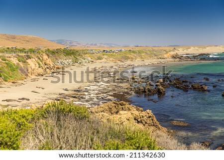 Seal Elephants, Big Sur, California, USA - stock photo