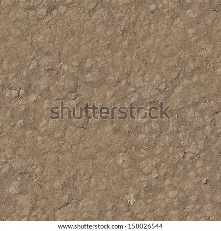 Seamless brown ground texture, covered by a fine layer of loose soil and small bits of dried, white weeds. - stock photo
