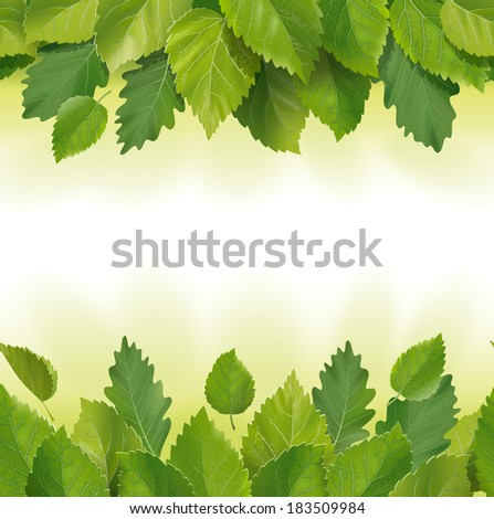 Seamless composition of the leaves (birch, oak) - stock photo