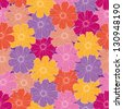Seamless floral background, pattern of colorful cosmos flowers. - stock photo