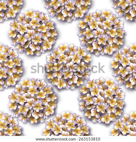 seamless floral pattern of bouquets of white flowers isolated on a white background. beautiful bouquets tropical flowers frangipani, plumeria. hawaiian abstract floral pattern  blossoming flowers - stock photo
