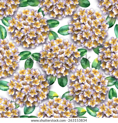 seamless floral pattern of bouquets of white flowers isolated on a white background. tropical flowers frangipani, plumeria, leaf, foliage. hawaiian abstract floral pattern blossoming flowers - stock photo