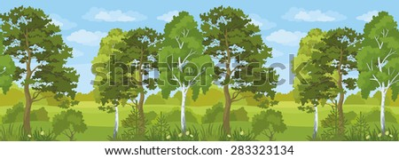 Seamless Horizontal Summer Landscape, Forest with Pines, Birches and Fir Trees, Flowers, Green Grass and Blue Sky with Clouds.  - stock photo