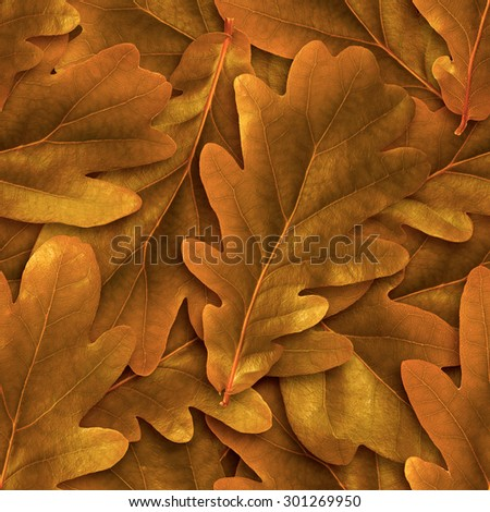 Seamless oak abscissed leafs background. - stock photo