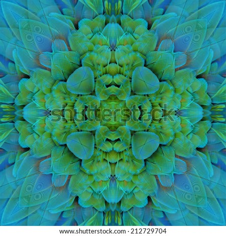 Seamless of bird feather,beautiful pattern background texture made from Harlequin Macaw feathers  - stock photo