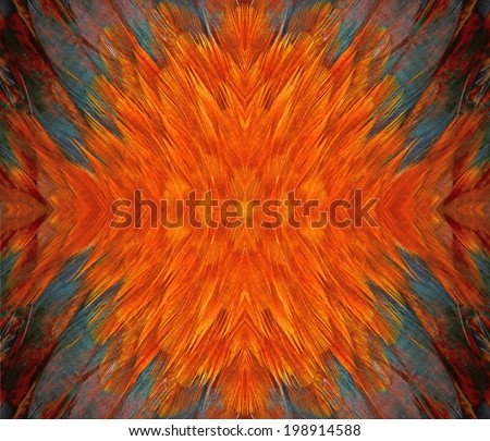 Seamless pattern made from Colorful  chicken feather