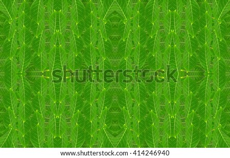 Seamless pattern made from Leaves background