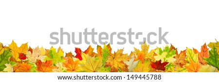Seamless pattern of autumn leaves, lying on the ground. - stock photo