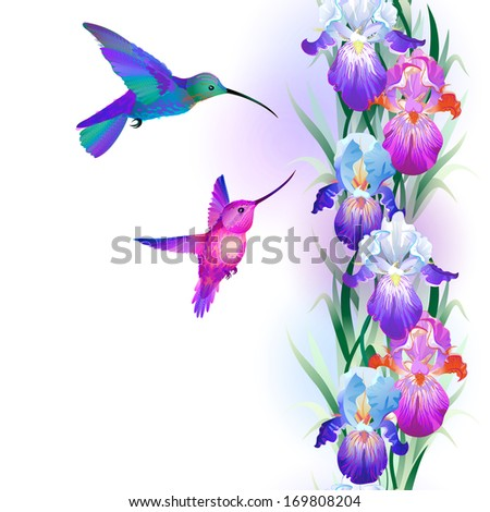 Seamless pattern with bright multicolored Iris flowers and hummingbirds (see eps version in my portfolio)