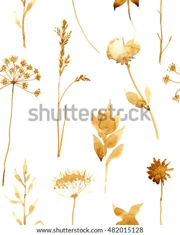 Seamless pattern with dry flowers and grass. Hand drawn watercolor illustration.