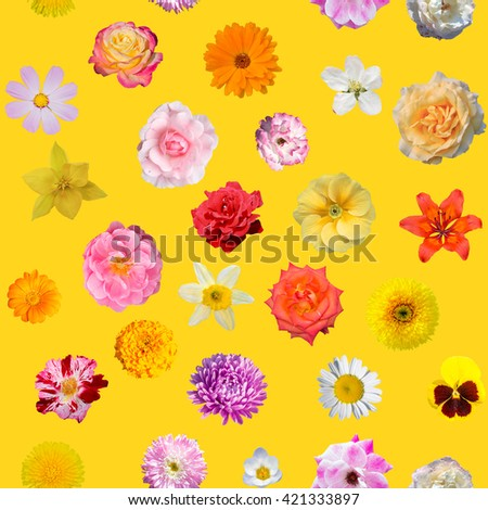 Seamless pattern with flowers on yellow background