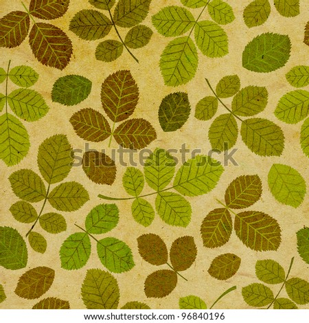 Seamless pattern with leaf, leaf background