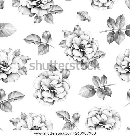 Seamless pattern with pencil drawings of rose flowers - stock photo