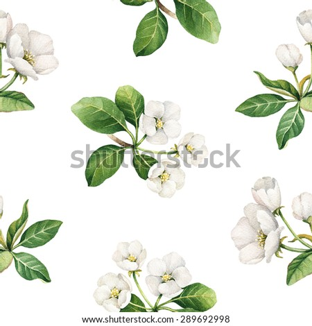 Seamless pattern with watercolor illustrations of apple flowers - stock photo