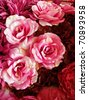 Seamless Red and Pink Fabric Roses Background - stock photo