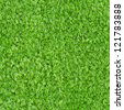 Seamless square texture - green moss - stock photo