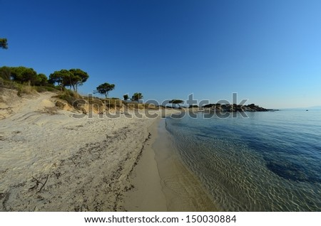 Seascape fish eye view of sandy beach, stones and pine trees in morning sunlight under clear, blue sky, Carydi beach, Chalkidiki, Sithonia, Greece