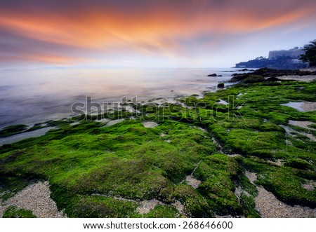 seascape light Sunset  green moss on the stone at seaside. - stock photo