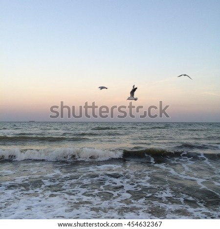 seascape, sea waves, beautiful evening light