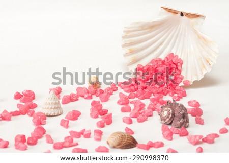 Seashell and purple stones on white background - stock photo
