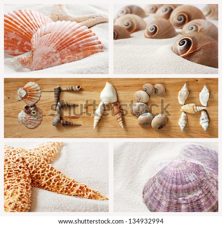 Seashell collage with shells arranged to spell the word 'BEACH' on wood background. - stock photo