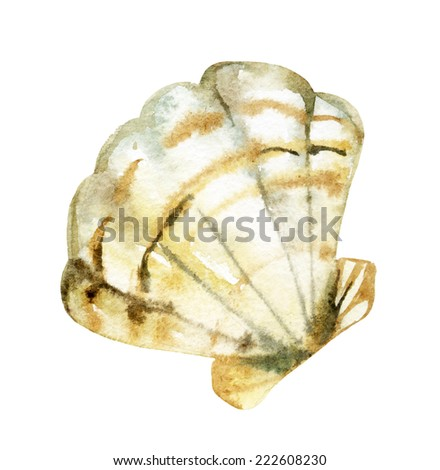 Seashell watercolor illustration. Hand drawn sketch - stock photo