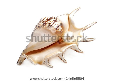 Seashell with pearl isolated on white background - stock photo