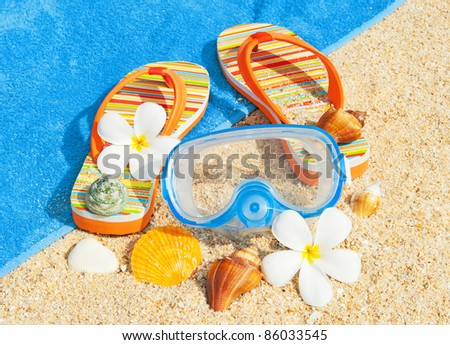 Seashells and diving mask on the beach - stock photo