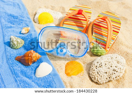 Seashells and diving mask on the ocean beach